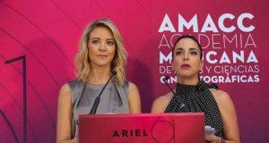 """Estos son los nominados al Ariel 2019, """"Roma"""" participa en 16 categorías"""