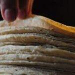 tortilla21